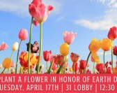 Plant a Flower for Earth Day